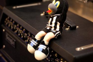 10月24日 – Magpies of the Day with Mesa Boogie MkV