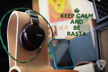06月13日 – SPREAD SOUND RASTA mini stereo cable